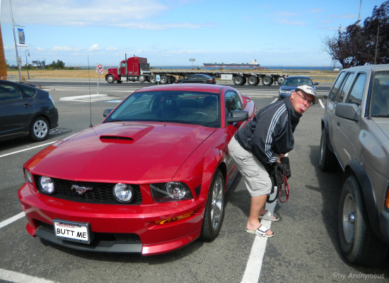 roger midworlder buttwashes londis mustang