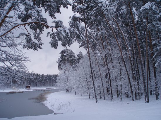 winter landscape Lithuania