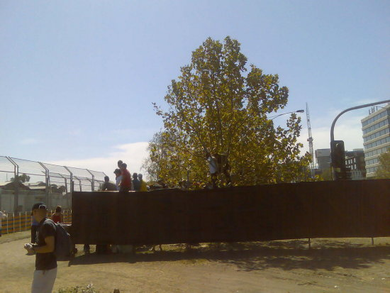 The grand prix in Melbourne peoples trees