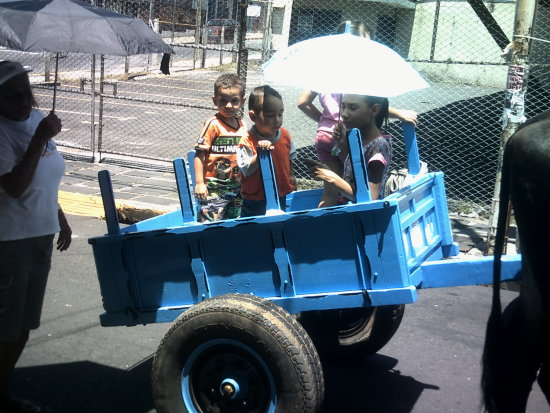 Oxcart parade in the scorching Sun.