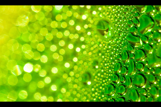 poison poisonous green greenish drops droplets macro closeup abstract