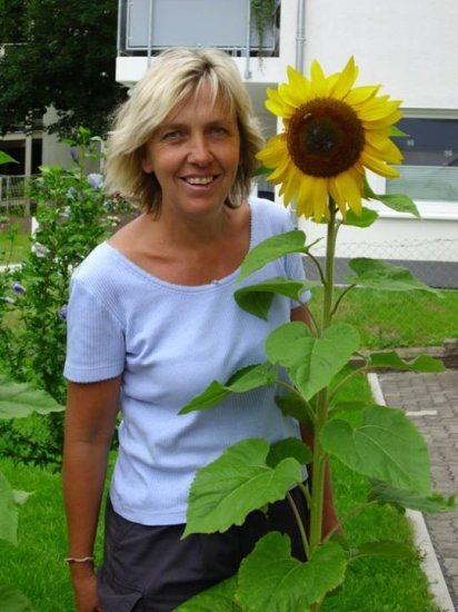 my sunflower an me