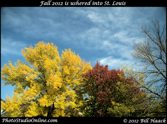 St Louis FunFriday AutumnFriday colors season fall 101612