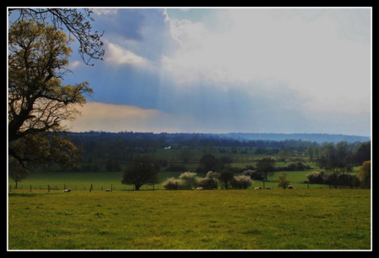 My Local Countryside 2