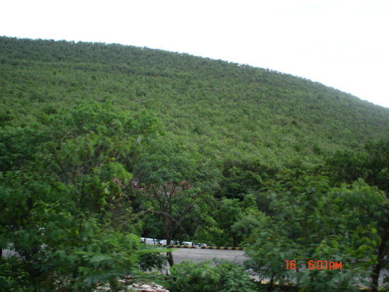 Tirupathi Hill in India