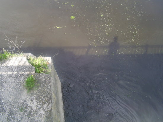 Water Shadow