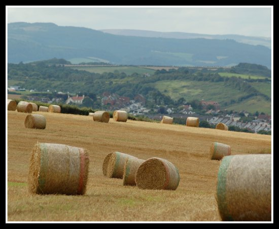 watchet somerset hay bales quantocks hills nature somersetdreams
