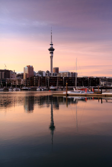 viaduct harbour downtown auckland dawn reflection skytower