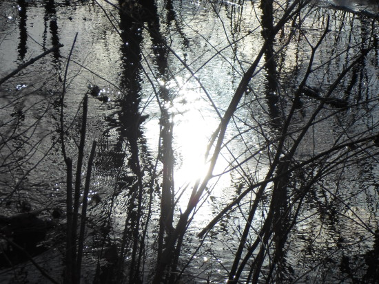 bright sunlight reflecting off water black white effect naugatuck river ct
