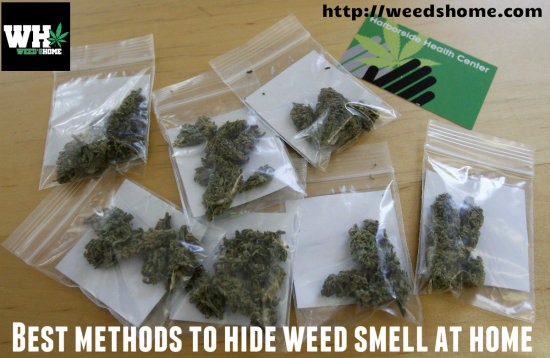 Five Places To Hide Your Stash
