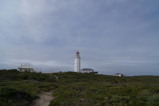 vacation africa lighthouse