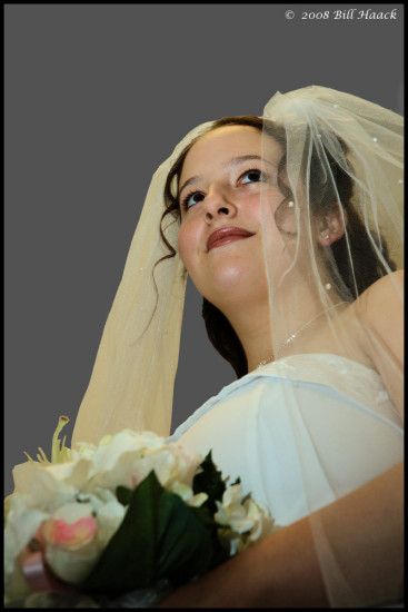 missouri us usa wedding series fdp vb jamie virginia 060708 bh 2008