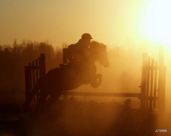sunset and dust ponies