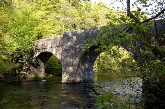 austins bridge dart buckfastleigh devon