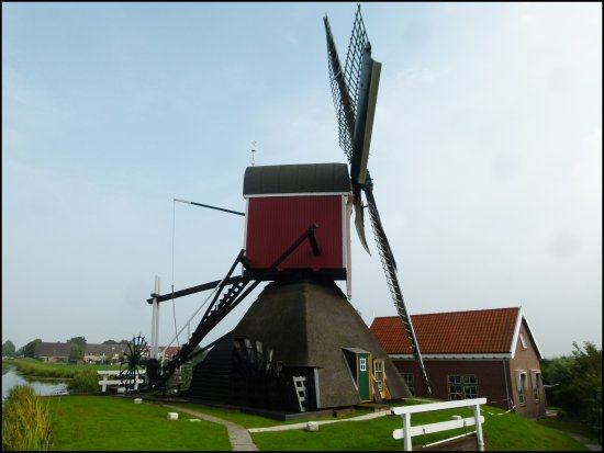 mill holland