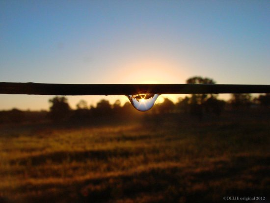 reflectionthursday water drop sunrise perth hills littleollie