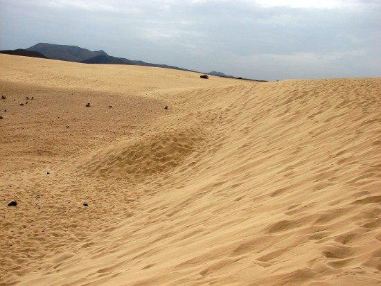 fuerteventura Corralejo dunes canary islands landscape nature sea atlantic ocean