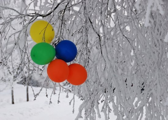 Colourful winter