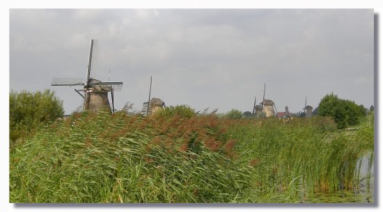 netherlands kinderdijk mill landscape view nethx kindx millx viewn landn
