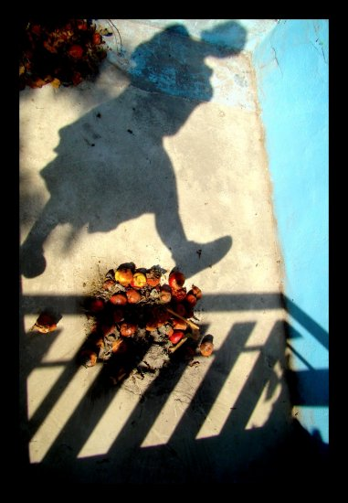 shadow body pool day rotten apples
