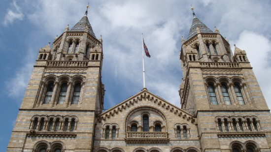 Maju Natural History Museum London England Architecture Building