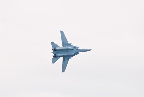 This is an F-14 I shot at an air show.  The sound was incredible.