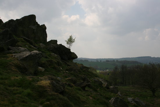 beacon hill leicestershire