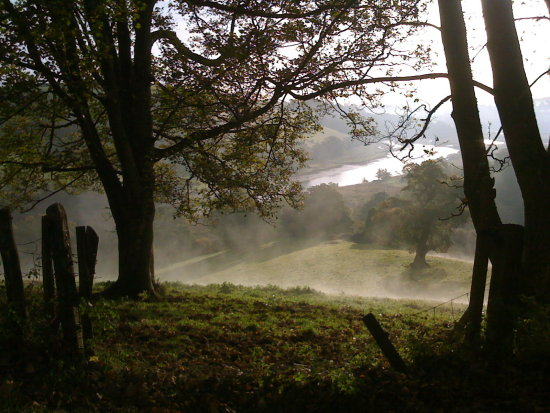 Mist morning totnes view landscape