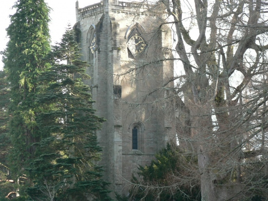 Cathedral through the trees in Dunkeld.  This is at the extreme left of the Cathedral and looks...