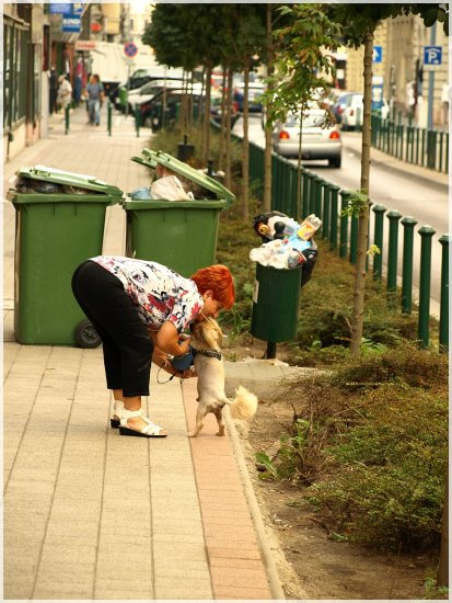 sexyfriday woman dog street social photo tree road garbage