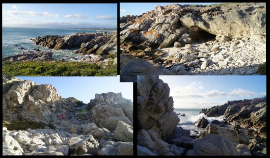 vacation africa gansbaai coast