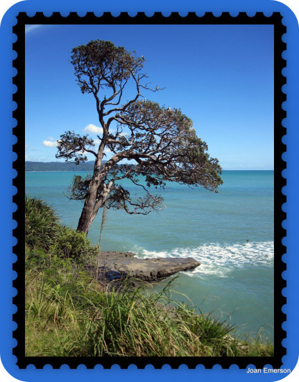 East Cape NZ