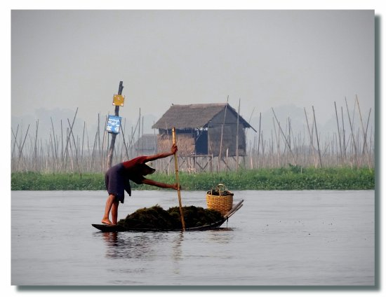 myanmar burma inlelake people lake boat burmx inlex boatb peopx