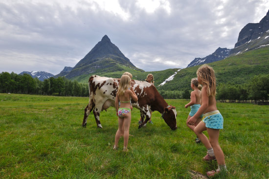 norway innerdalen children cow landscape