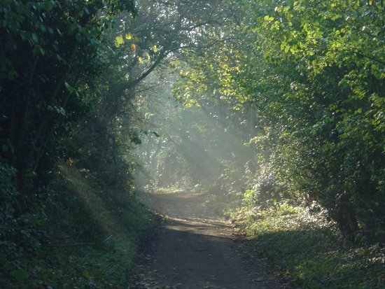 The path of promises to come....Woodlane, Tingewick, UK