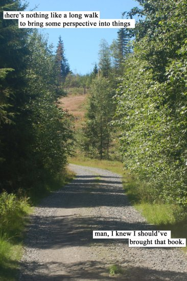 forest road Norway text