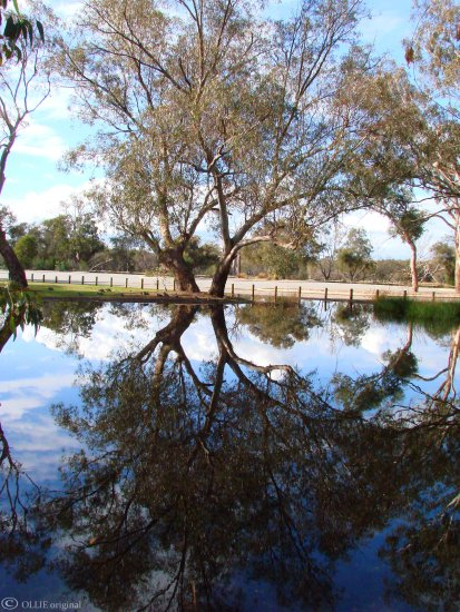 reflectionthursday temporary water redciff perth wa littleollie