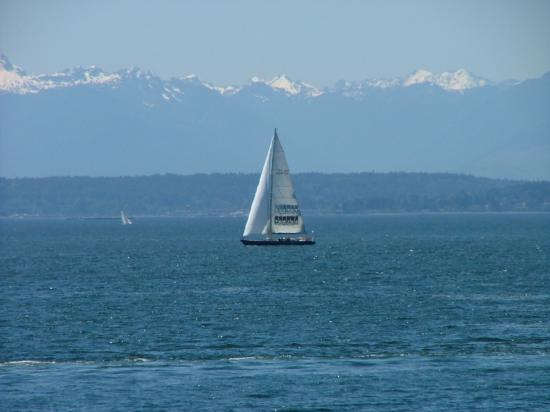 sound puget washington sailing