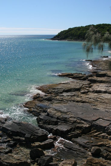 dolphin bay noosa heads noosa sunshine coast