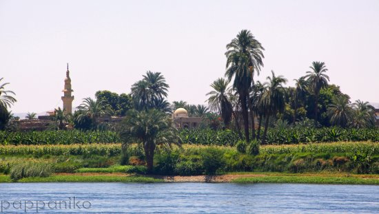 summer nile egypt