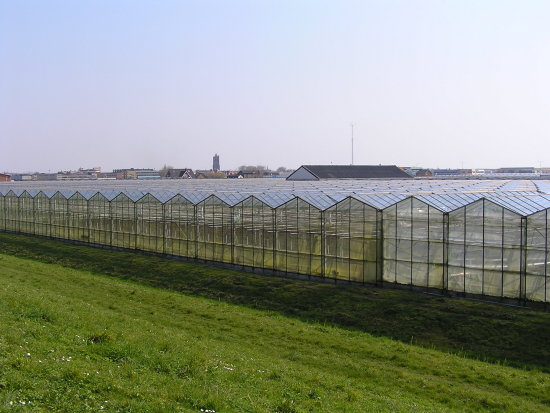Glass City, near the Hague. Not my favourite part of the country as there's no horizon.
