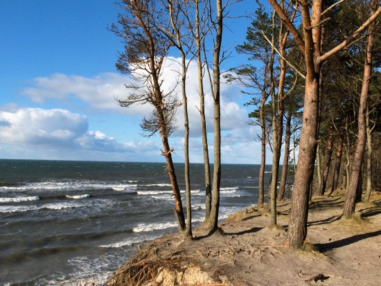Dutch cap Lithuania Baltic sea