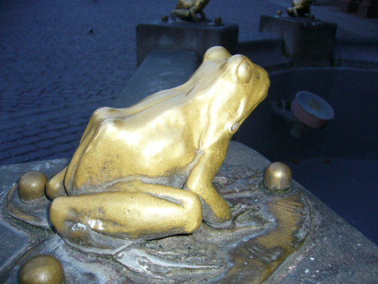 this is old pic but i like this gold frog ;)