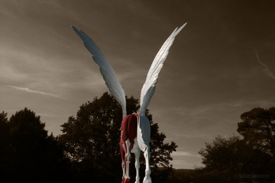 pegasus horse myth statue damienhirst chatsworth art wings