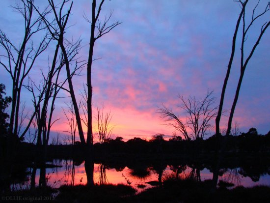 reflectionthursday sunrise perth hills littleollie