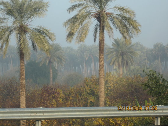 Baghdad in the morning