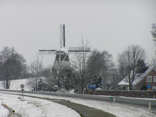 Windmills Winter Scenery Series Snow Tree Millclub