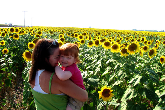 sunflowers field summer granddaughter wife