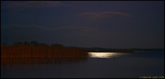 Moonlight river shannon nature night Ireland