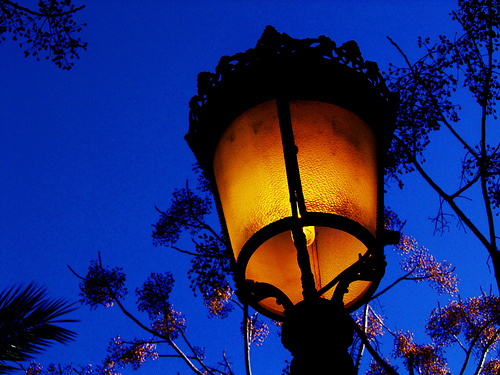 night street lamp tree